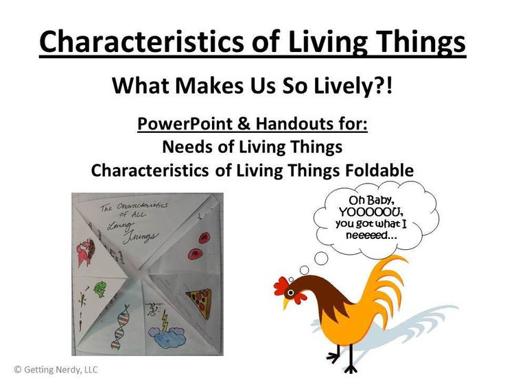 essay about characteristics of living things Characteristics of life is often the first topic in biology courses including school biology some books list 6 characteristics of life, other books list 7.