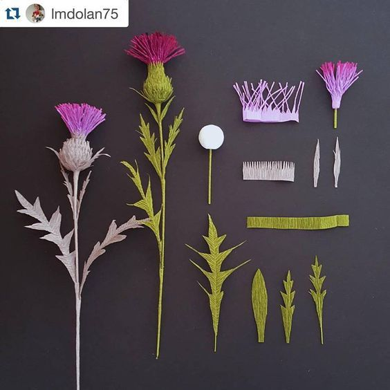 Pocket Field Guide for Paper Plants: Thistle. One of the first Castle in the air: plants I ever crafted and a personal favorite. Excited to see early signs of it along the trails! (It's edible!) Florist crepe, wire, and spun cotton forms, courtesy of @1castleintheair
