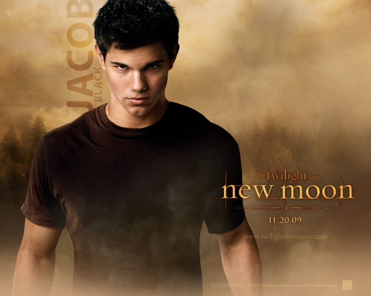 Best one of these topics for an essay on New Moon by Stephanie Meyer?