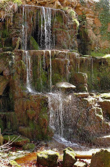 38 Glorious Japanese Garden Ideas: 118 Best Images About Cottage Garden: Water Features On