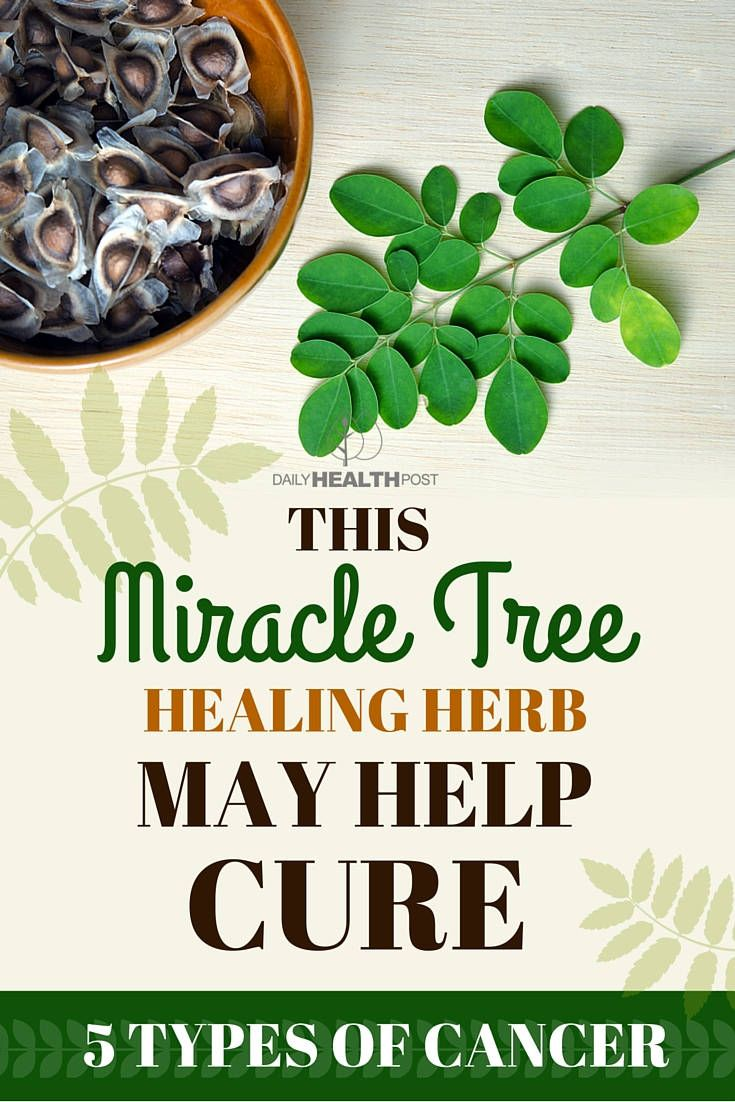 This Miracle Healing Herb From Nature Helps Fight 5 Different Types of Cancer via @dailyhealthpost