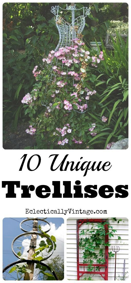10 Unique Trellis Ideas - I'm definitely trying some of these! eclecticallyvintage.com