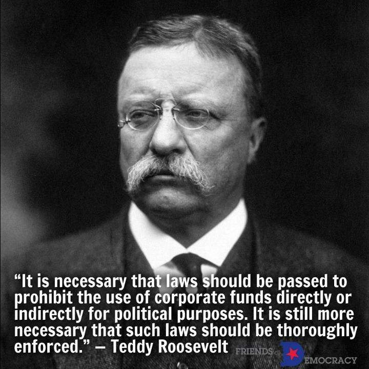 theodore roosevelts contributions to american political The early years theodore roosevelt was born in new york city roosevelt was a sickly child who suffered from asthma he developed an early interest in wildlife, and as a child hoped to become a zoologist.