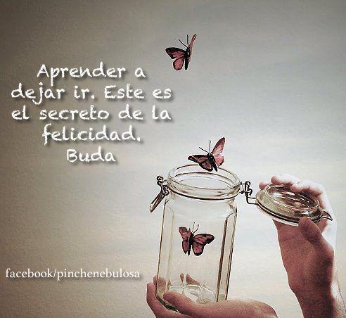 Poder Y Fuerza De Voluntad: Secret De La Felicidad: Aprende A Dejar Ir. - http://alegrar.me/poder-y-fuerza-de-voluntad-secret-de-la-felicidad-aprende-a-dejar-ir/