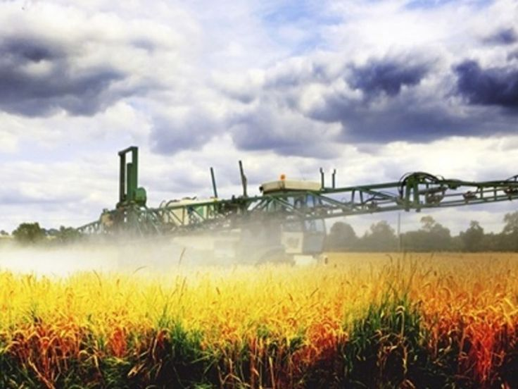 I am frankly shocked this information is not making front page newsright now.Monsanto will do anything to bury this story… and as of right now, it's working.