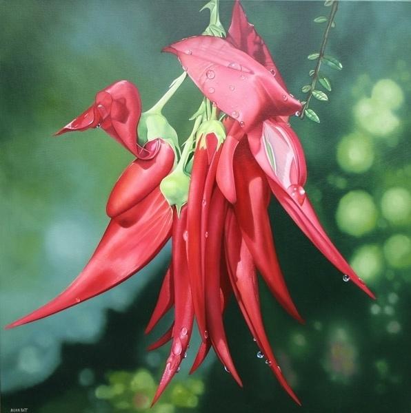 Allan Batt...'Flowering harakeke' NZ flax