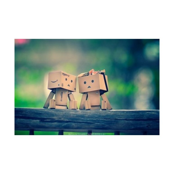 Image result for danbo married