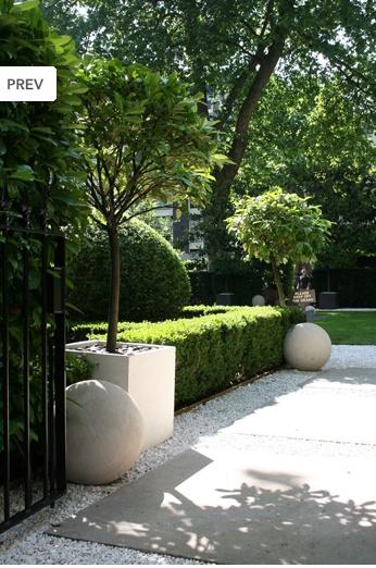 boxwood hedge cement sphere