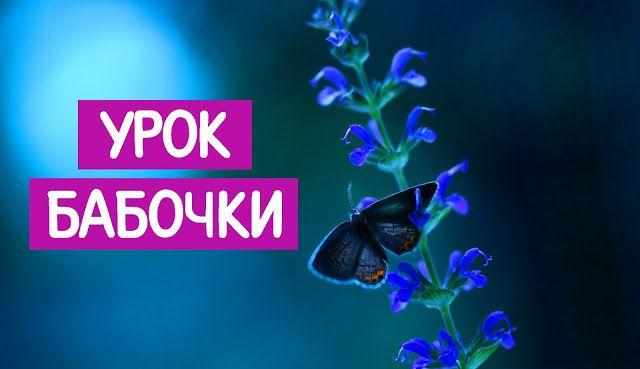 УРОК БАБОЧКИ ~ Трансерфинг реальности