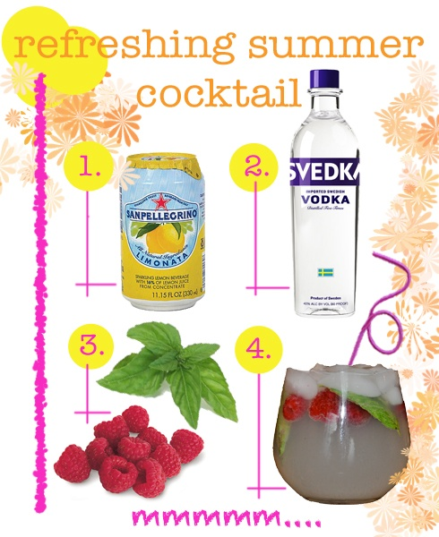 My usual go-to summer cocktail, a Vizze, involves any flavor Izze soda and uh, vodka on ice. Done! This works too...