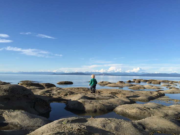 news issues vancouver shakedown horny hornby island vacation paradise
