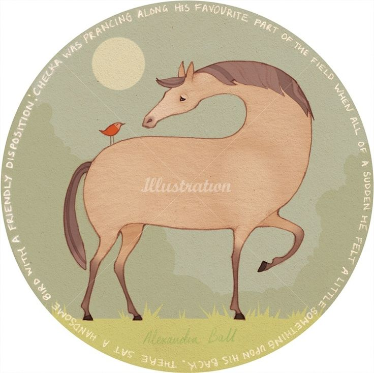 Alexandra Ball: Checka the Horse illustration