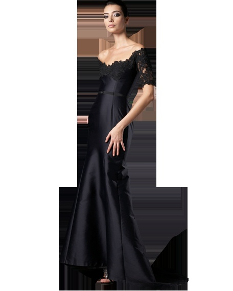 Lace-sleeve gown