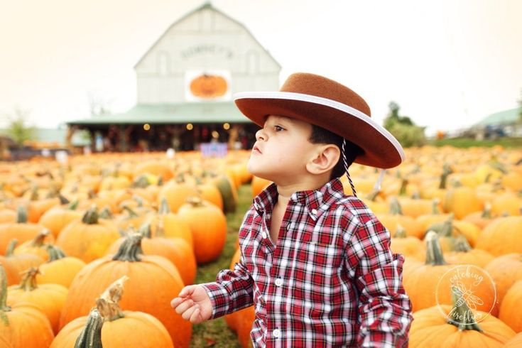 Curious 2 year old at the pumpkin patch. Toddler cowboy celebrating his birthday at Downey's Farm . http://www.catchingfireflies.ca/fun-2nd-birthday-photo-session-at-downeys-farm/