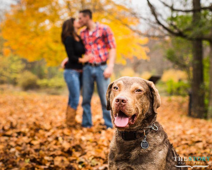Engagment photo near Cazenovia, NY with dog