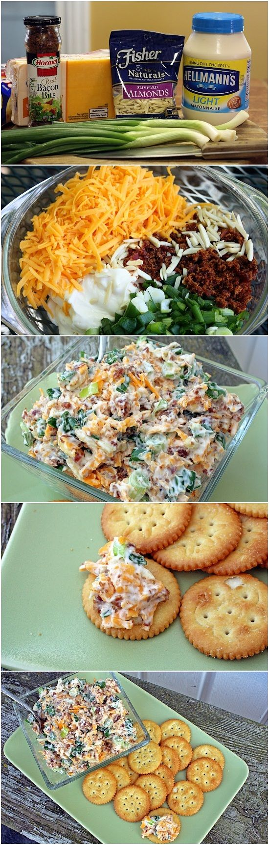 Neiman Marcus Dip - 6 green onions chopped, 8 oz shredded cheddar, 1 1/2 cups mayonnaise, 1 jar Hormel Real Bacon Bits, 1 pkg slivered almonds – Mix all ingredients together, Chill for 2 hours, Serve with crackers.