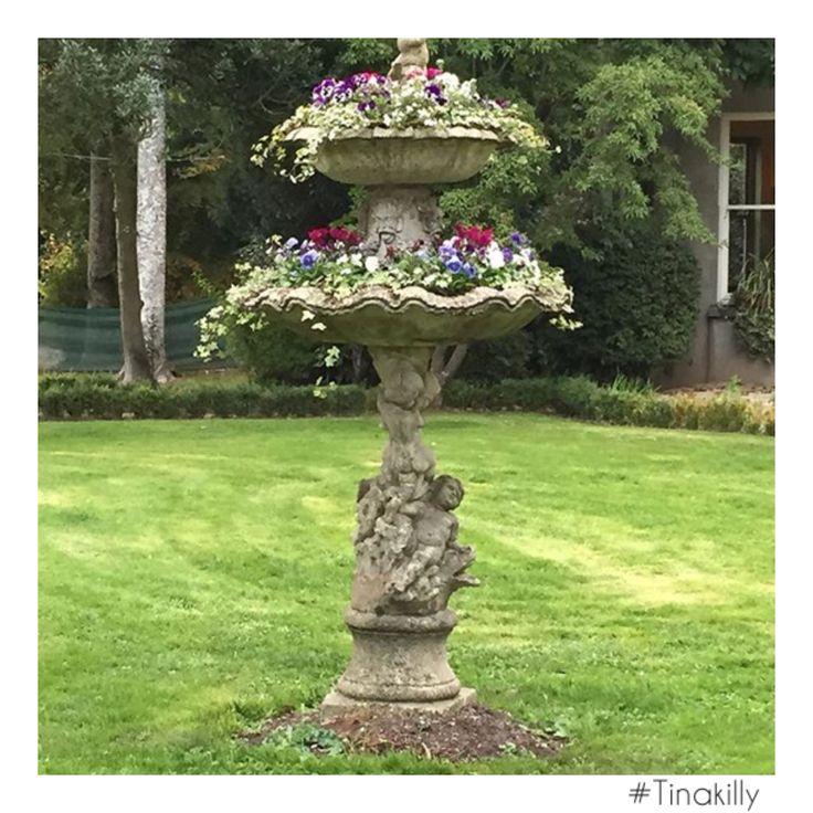 Garden views @tinakilly_country_house_hotel thanks @londoncallinglu #Tinakilly #tinakillygardens #GardenOfIreland