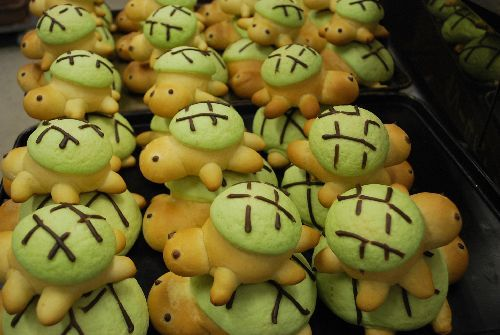 Many turtle bread
