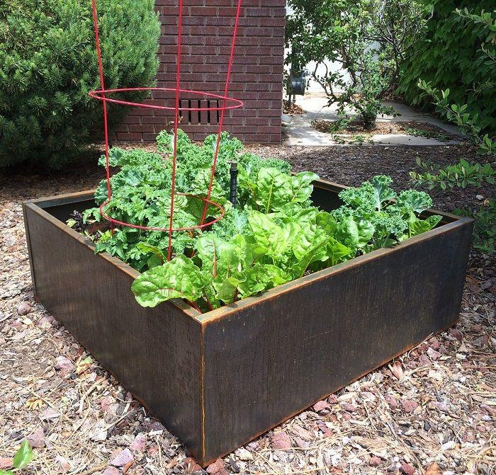 corten round garden beds - photo #14