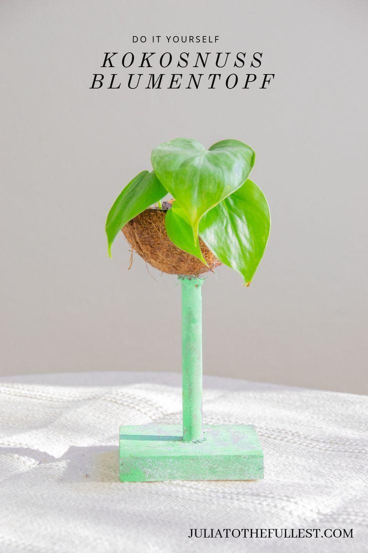 Diy Kokosnuss Blumentopf Kokosnuss Kokosnussschale Und