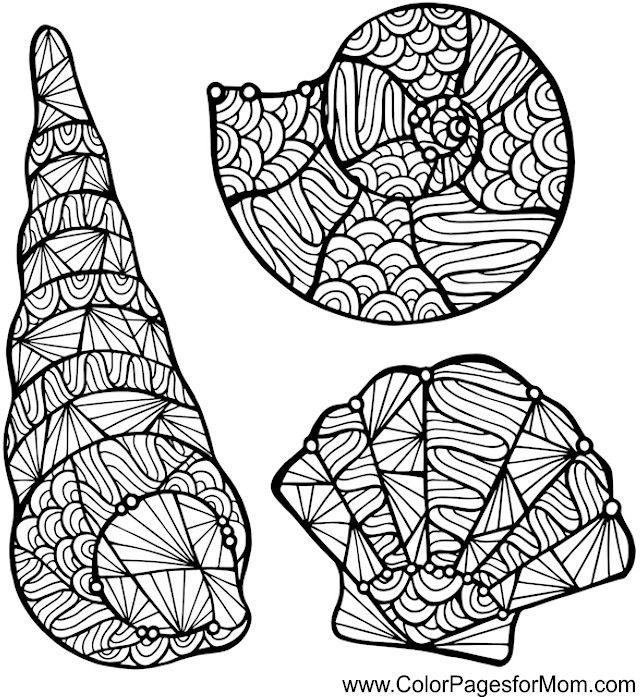 Shells Zentangle Colouring Page