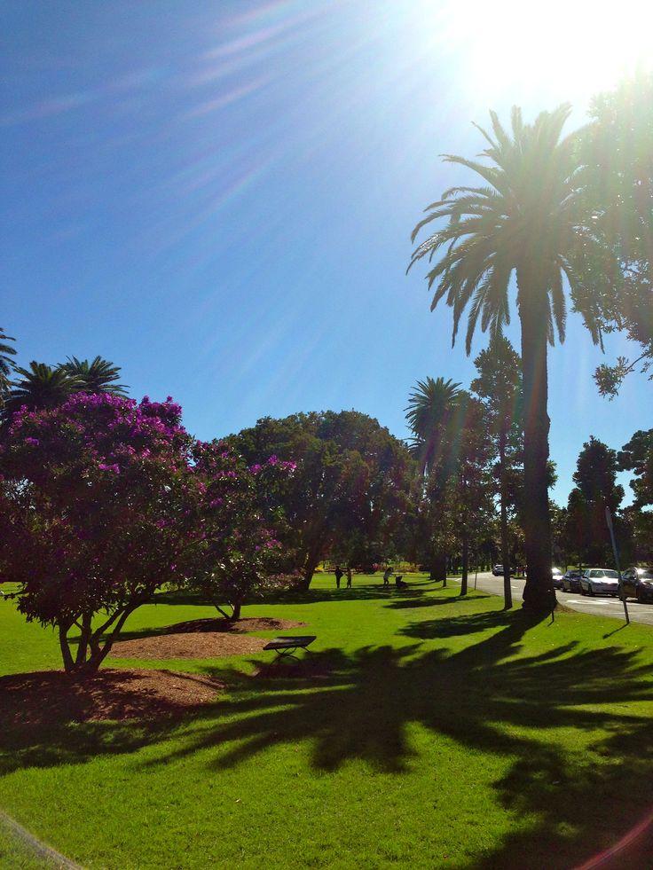 Centennial Park, Sydney.