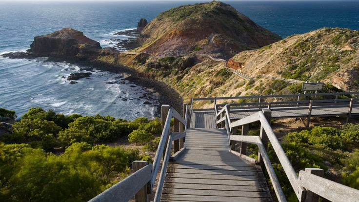 The Best Day Trips to Take From Melbourne, Australia