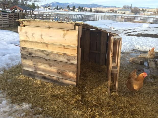 how to make a field shelter from pallets