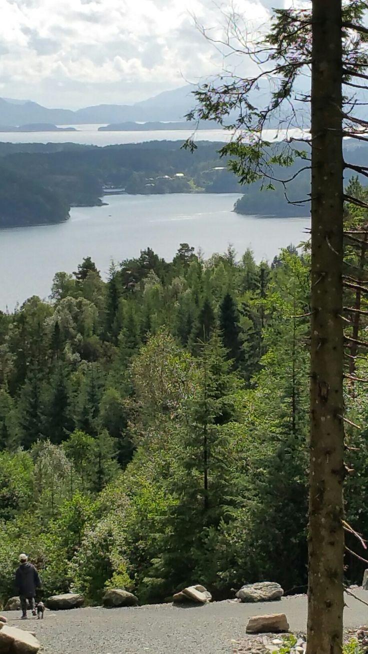 SkeisOsen, Bjørnefjord