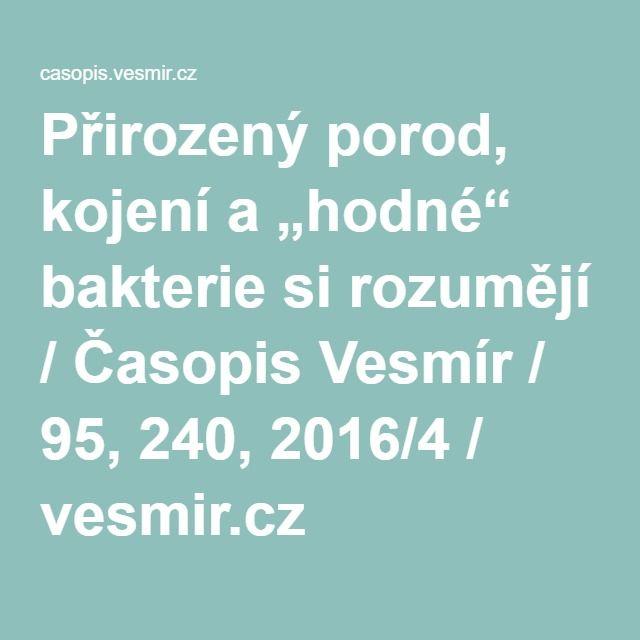 """Přirozený porod, kojení a """"hodné"""" bakterie si rozumějí / Časopis Vesmír / 95, 240, 2016/4 / vesmir.cz"""