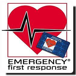 E.F.R.  Aprende a cuidar de ti y de los demás.  El curso Emergency First Response (E.F.R.) te enseñará los procedimientos de actuación en las emergencias más comunes de la vida diaria, así como las técnicas de reanimación cardiopulmonar y el manejo del defibrilador automático.  Es un curso muy recomentado incluso para no-buceadores.   El curso se hace en 1 ó 2 días, dependiendo del número de alumnos. Se puede hacer también en fines de semana