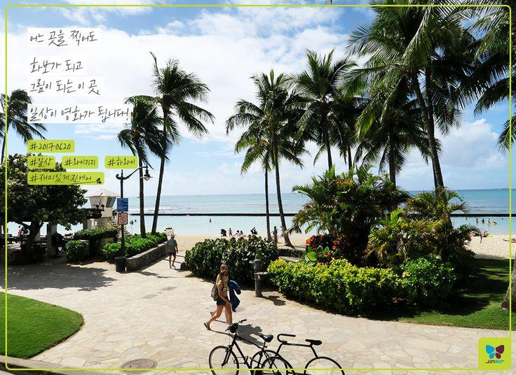Today's Photo From Hawaii #Today_Photo with Jin Air #jinair #Hawaii #Honolulu #진에어 #하와이 #호놀룰루 #재미있게지내요 #재미있게진에어 #20170620 #알로하 #일상이화보 #일상이영화