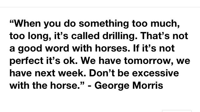 """""""When you do something too much, too long, it's called drilling. That's not a good word with horses. If it's not perfect it's ok. We have tomorrow, we have next week"""" -George Morris"""