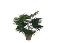 Kunstig palme
