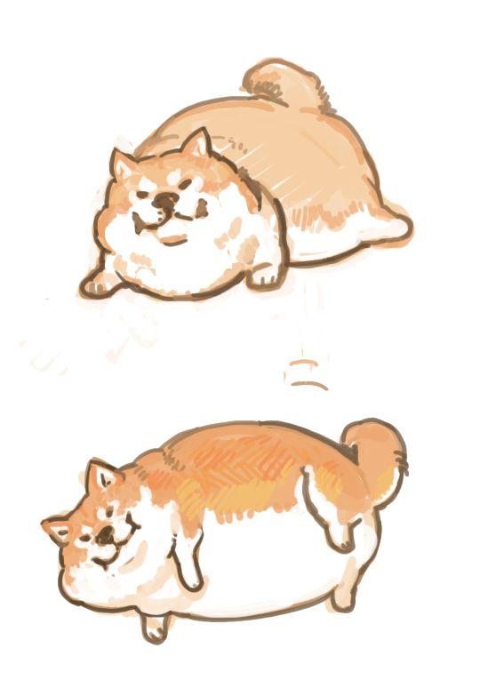 hahahaha...cute fat dog:D