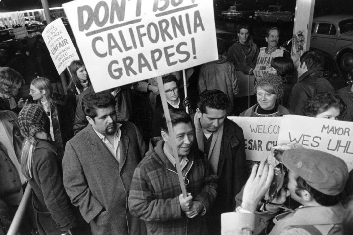 workers political rights essay It revived in the 20th century as a social lodge and briefly became a nationwide political power  essay: the ku klux klan  the klan fought the civil rights.