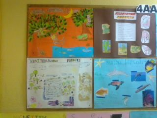 Ecosystems project work