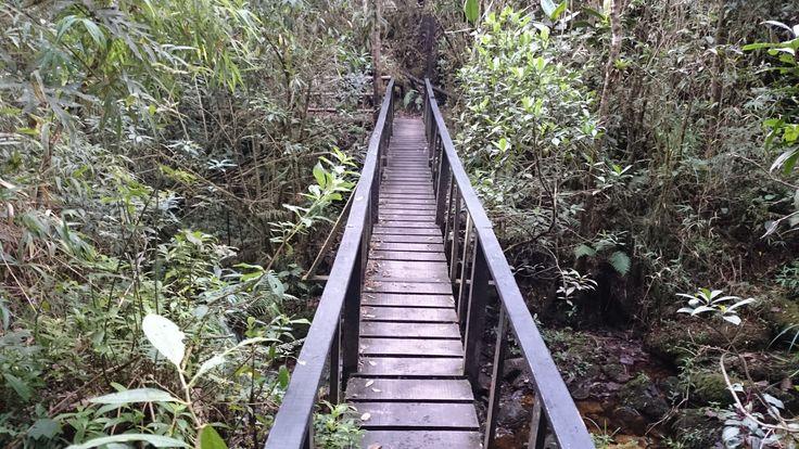 Parque Iguaque, octubre 12 de 2014