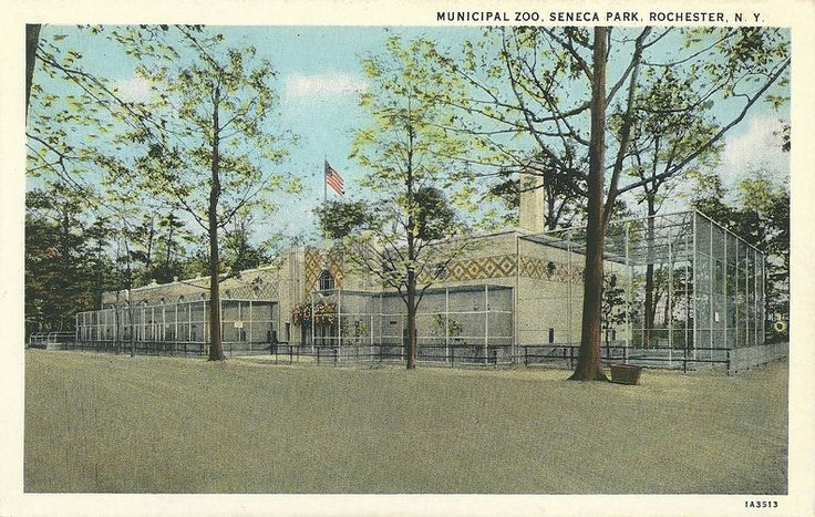 Municipal Zoo, Seneca Park, Rochester, N. Y.  Dated: 1931 Published by: The Rochester News Co., Rochester, N. Y> Number: 1A3513