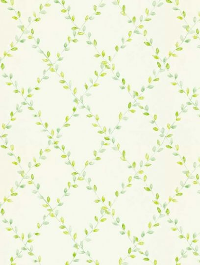 Spring Trellis (212438), a feature wallpaper from Sanderson, featured in the Options 11 collection.