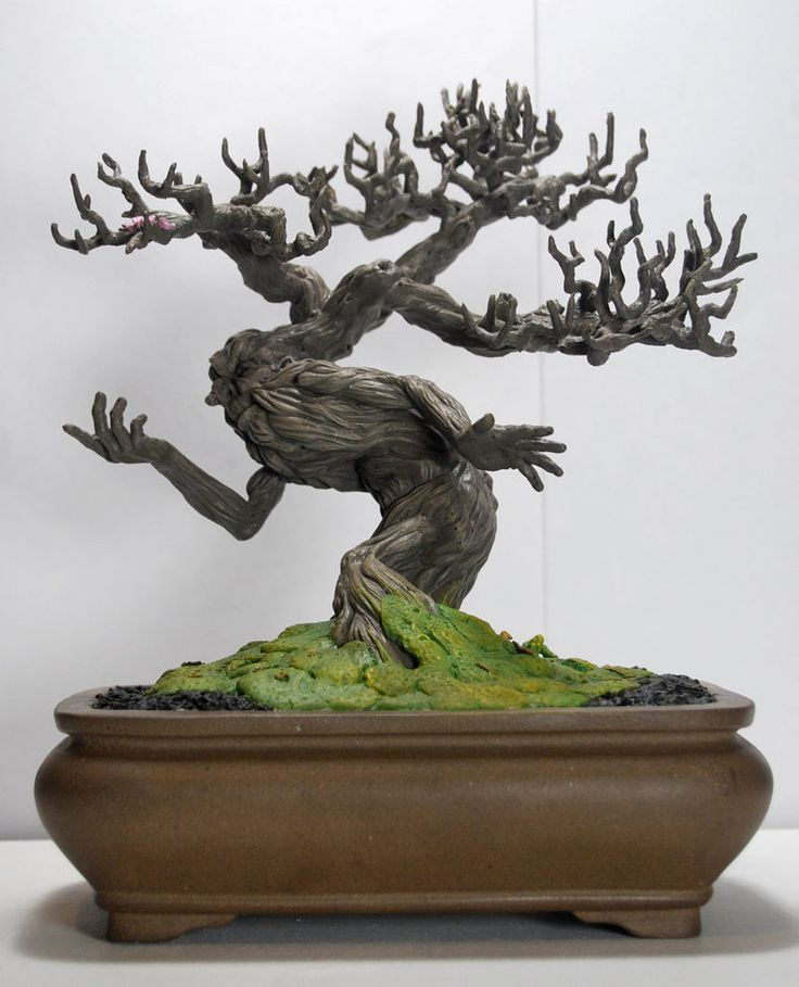 Bonsai Tree Ent by kgosselin