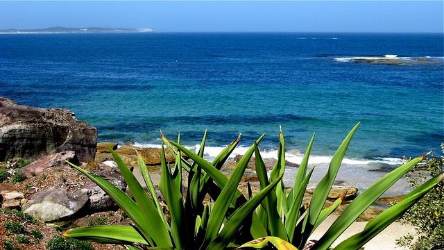 Cronulla Beach, Sydney, Australia