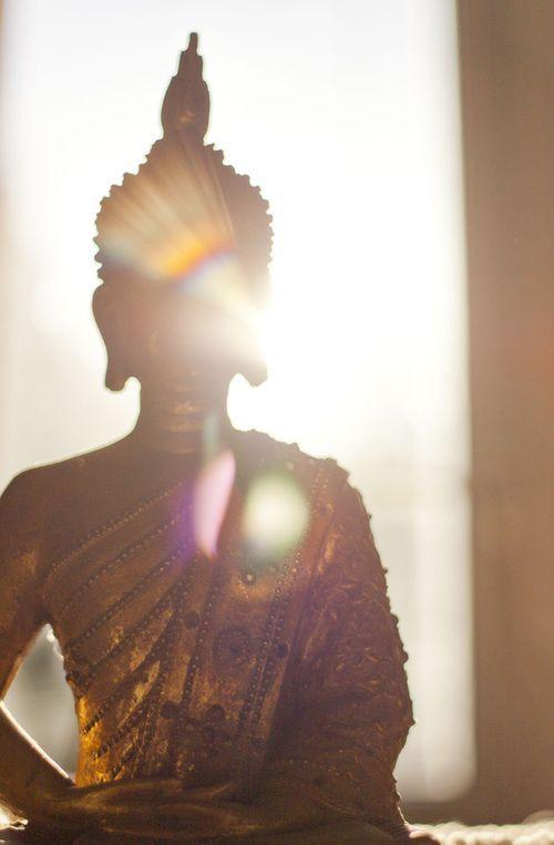 La potenza del pensiero muta il destino. L'uomo semina un pensiero e raccoglie un'azione; semina un'azione e raccoglie un'abitudine; semina un'abitudine e raccoglie un carattere; semina un carattere e raccoglie un destino. L'uomo costruisce il suo avvenire con il proprio pensare ed agire. Egli può cambiarlo perché ne è il vero padrone. (Swami Sivananda)
