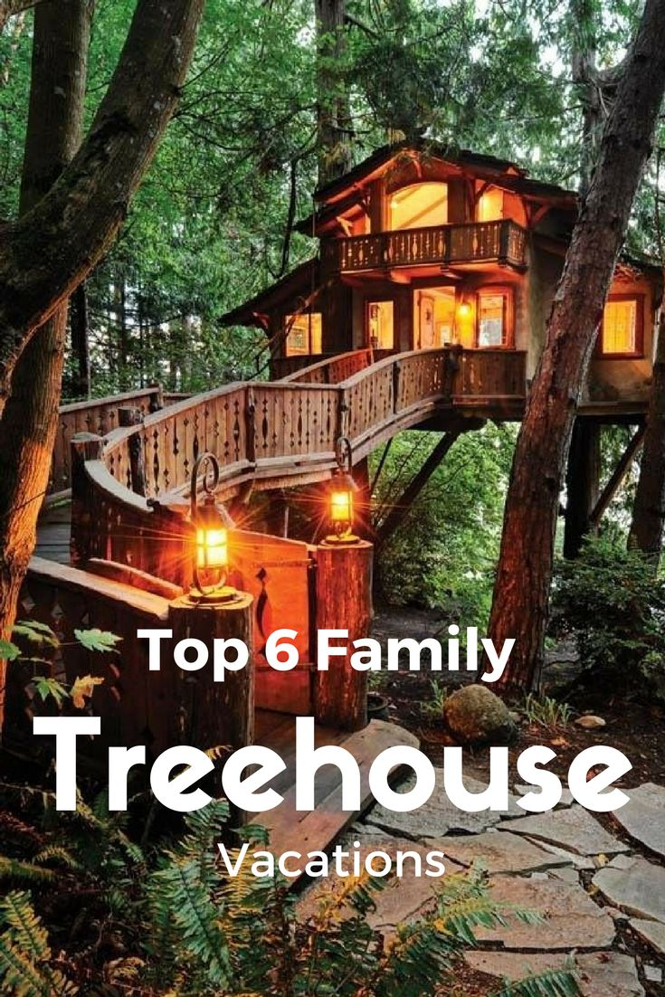 Exotic Tree Houses Best 25 Treehouse Vacations Ideas On Pinterest Tree House