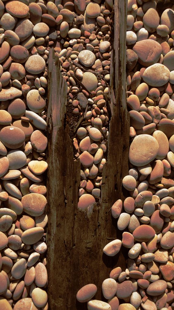 "Brown | Buraun | Braun | Marrone | Brun | Marrón | Bruin | ブラウン | Colour | Texture | Pattern | Style | ""Sleeper in Pebbles"" is an original photographic print ~ by StarfishQuay"