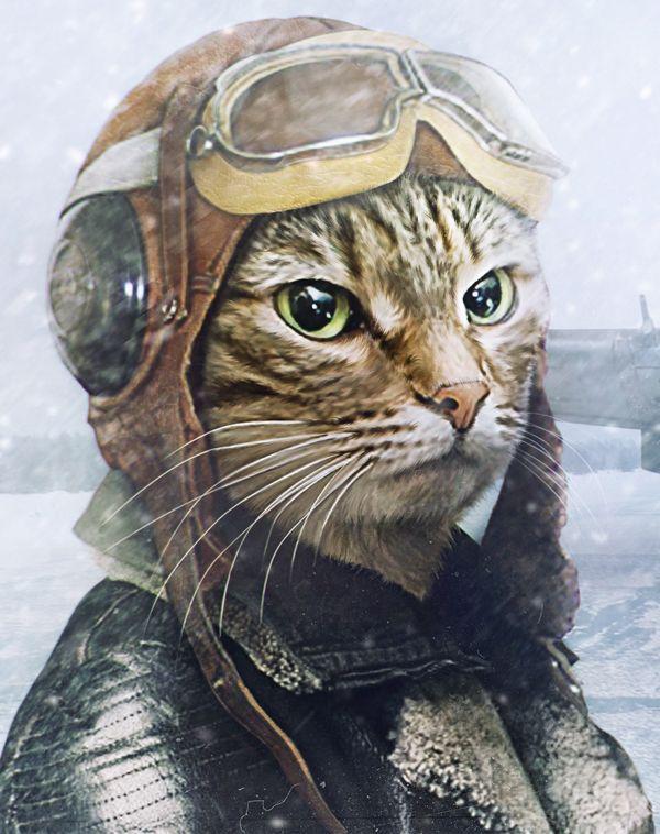 Cat-Pilot by xSti , via Behance