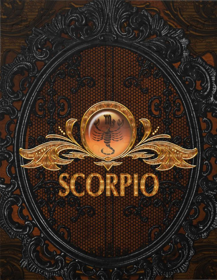 scorpion par Aleksandra Zaric