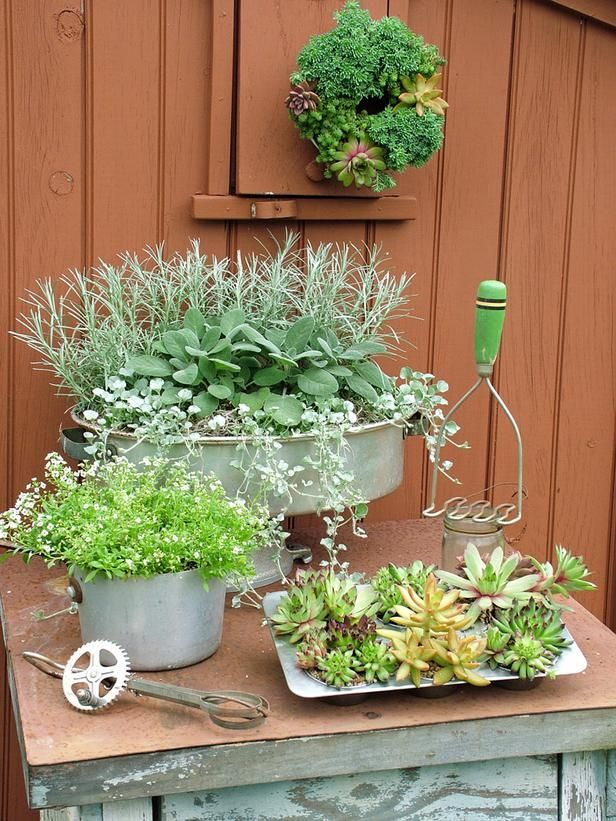 """Stunning Low-Budget Container Gardens : Outdoors : Home & Garden Television.  Super cute ideas for container planting. Paint cans, old hats/purses coffe pots tons of """"junk"""" that people usually have in the free pile or super cheap at the thrift store"""