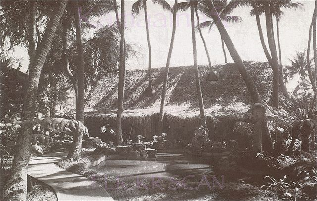 Polynesian Village Waikiki c1947    Tropical gardens at Don the Beachcomber's Polynesian Village in Waikiki. Opened 1947 on Kalakaua Avenue next to Liberty House, became the International Market Place 1956. Old black & white advertising postcard.