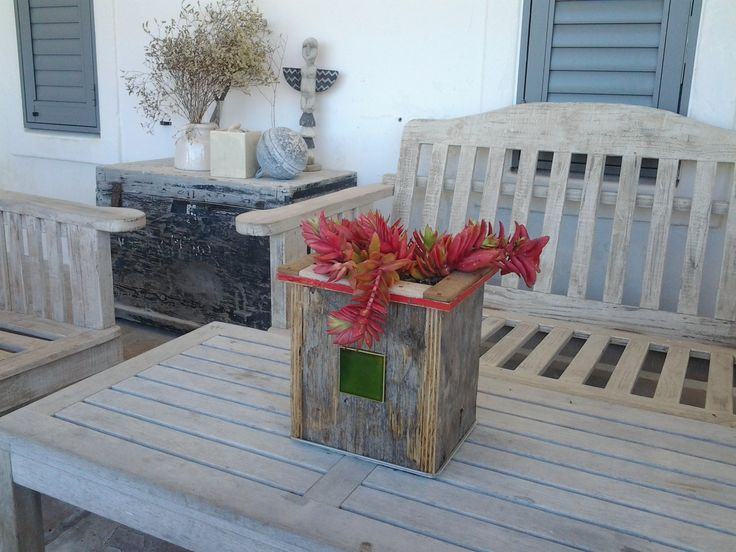 global-drift planter with local succulent